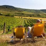szőlőbirtok fesztivalok.info